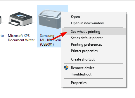 see-what-printing-option